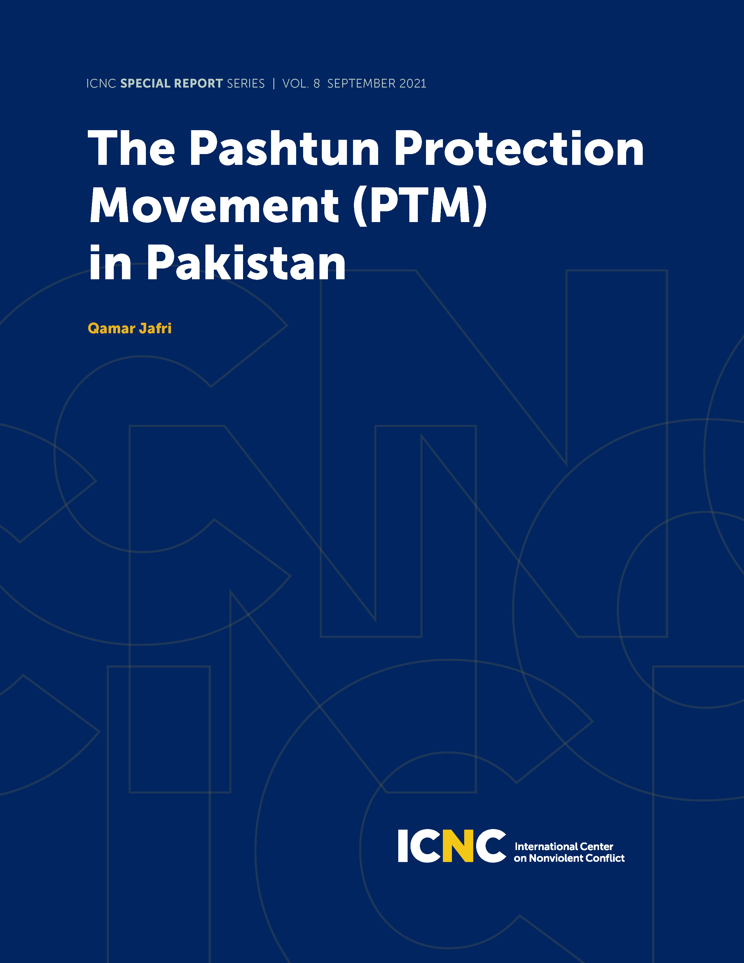 The Pashtun Protection Movement (PTM) in Pakistan